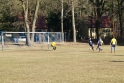 2019-02-24_FC Blau-Weiß Stücken_Blau-Gelb Falkensee_10