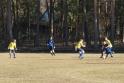 2019-02-24_FC Blau-Weiß Stücken_Blau-Gelb Falkensee_26