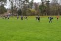 2019-03-17_SV Falkensee-Finkenkrug - FC Blau-Weiß Stücken 09