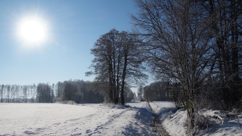 2021-01-31_Winter_in_Stuecken_12