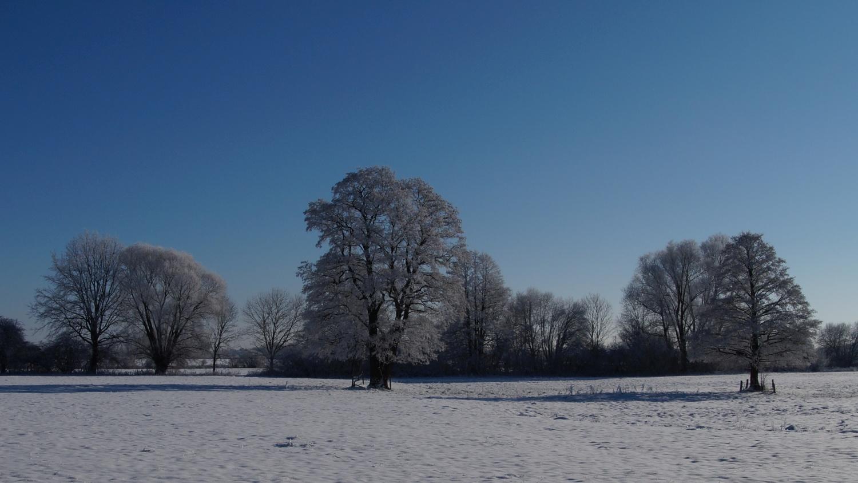 2021-01-31_Winter_in_Stuecken_14