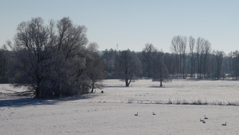 2021-01-31_Winter_in_Stuecken_23