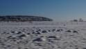 2021-01-31_Winter_in_Stuecken_06