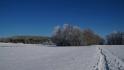 2021-01-31_Winter_in_Stuecken_15