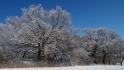 2021-01-31_Winter_in_Stuecken_24