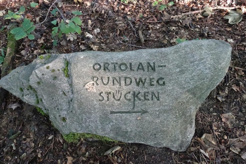 001_Ortolan_Rundweg_Stein
