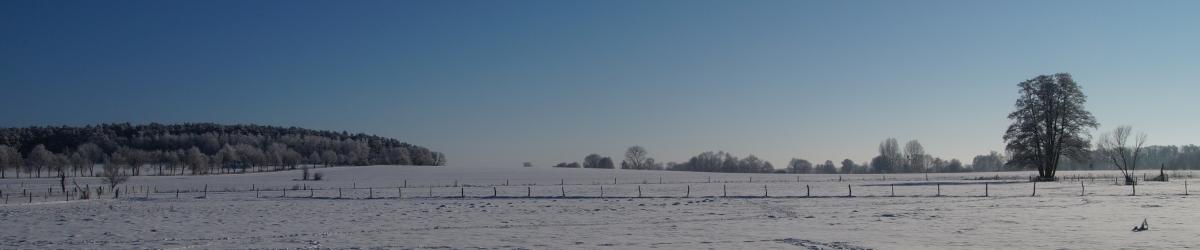 Dorfgeschichte(n)
